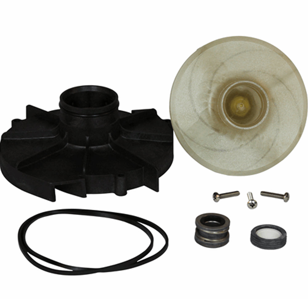 Wayne Water Systems WAYNE 62065-WYN1 Repair Kit WLS100