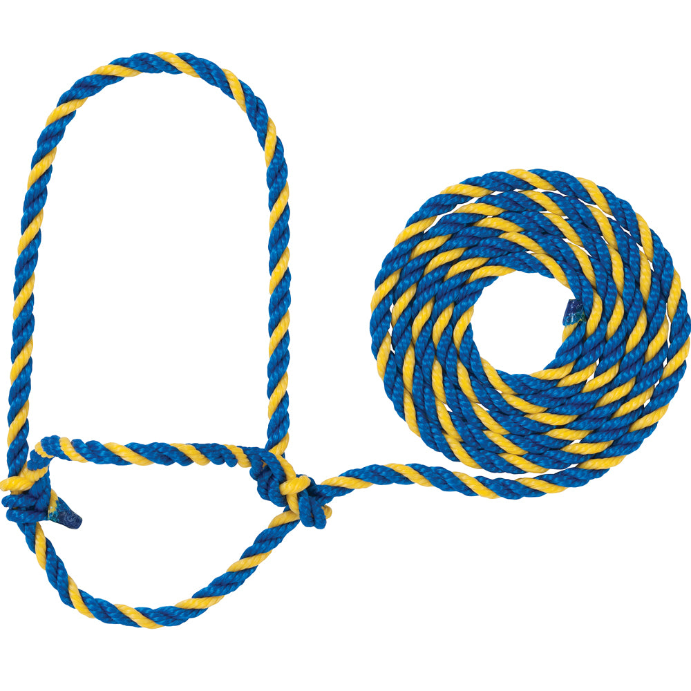 Weaver Leather Cow Rope Halter Blue And Yellow