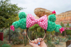 (Restock December 15th at 8pm EST/ 5pm PST *Ship in 3-5 business days) Cactus Macaron Ears / Polka dot pink bow