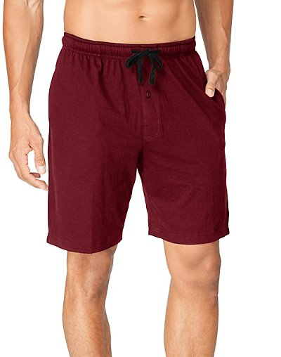 Hanes Men's Jersey Lounge Drawstring Shorts with Logo Waistband 2-Pack - 1005
