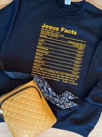 Jesus Facts 100% (sweatshirt)