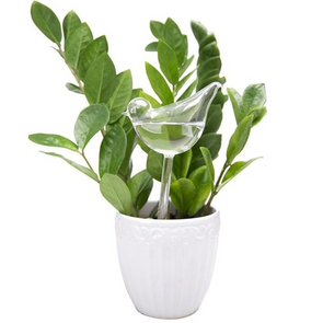 Self Plant Watering Device
