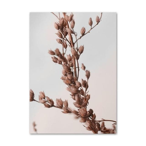 Pink-Reed-Grass-plant-Wall-Art
