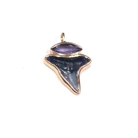Fossil Shark Tooth Tanzanite Charm