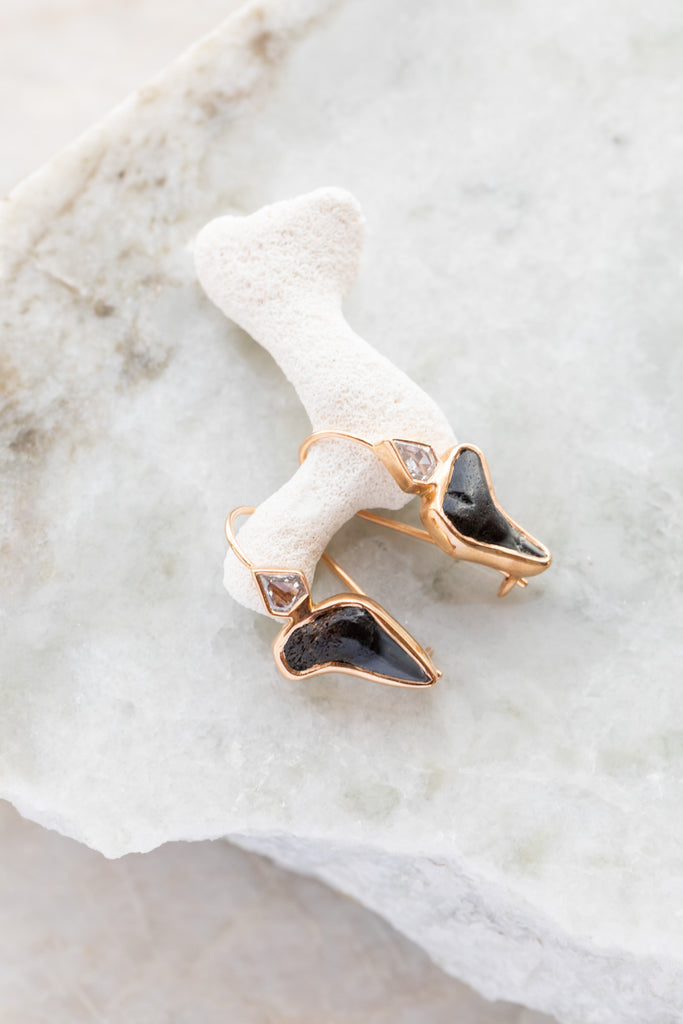 Medio Fossil Shark Tooth w/ Diamond Earrings