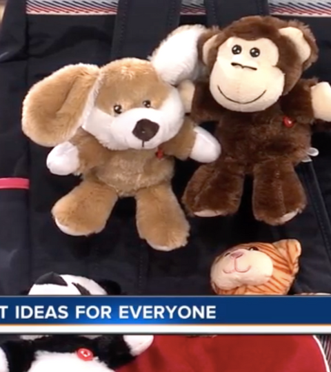CNBC WPTV Last Minute Gift Ideas