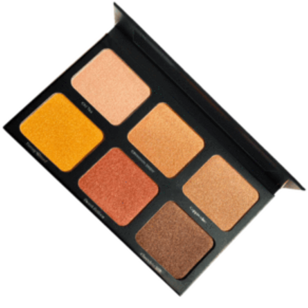 Danessa Myricks Light Work 2 Palette
