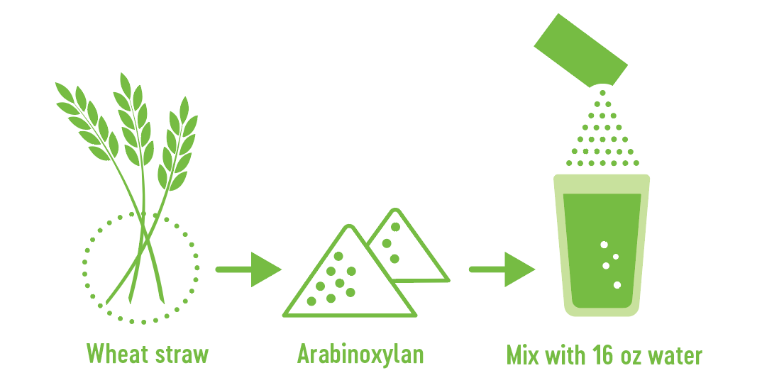 how Arabinoxylan becomes iced tea