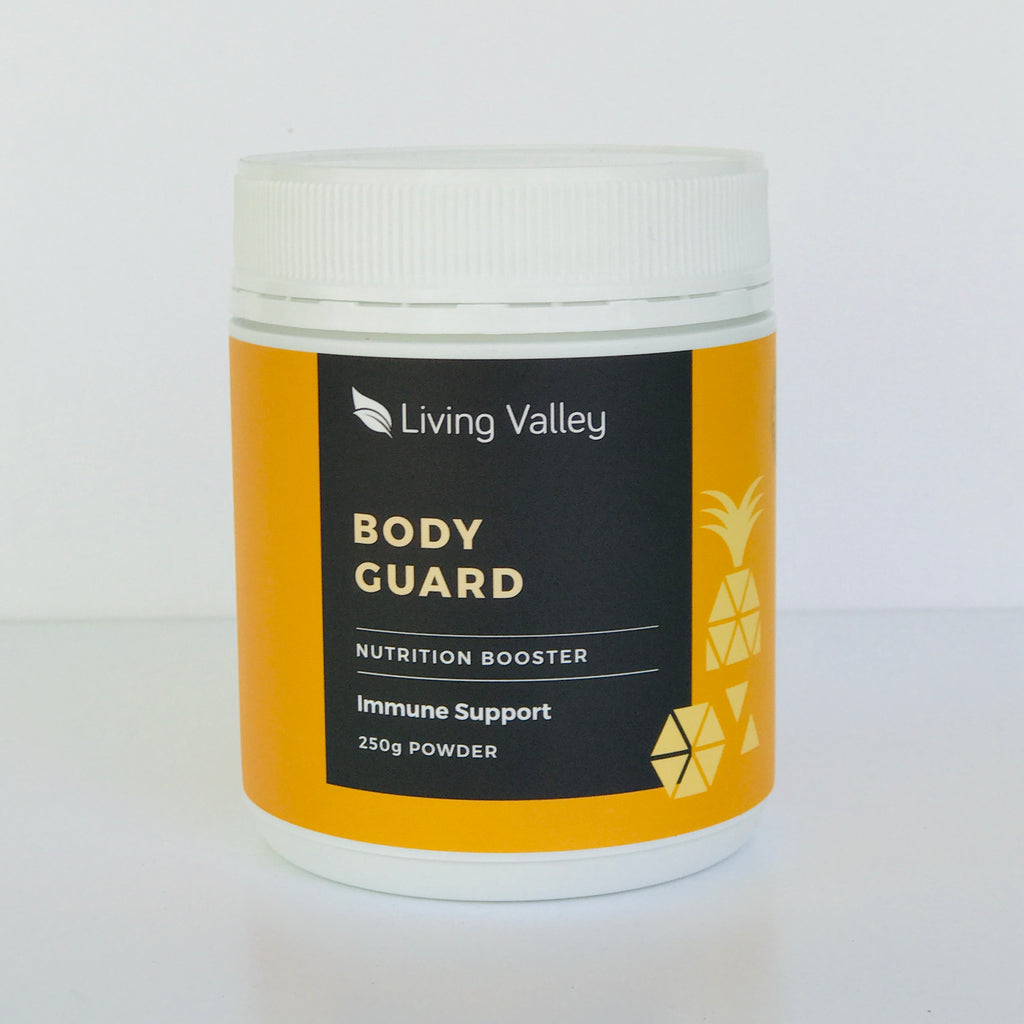 Living Valley Body Guard (New Breakfast Boost) - 250g Powder