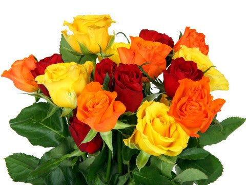 a perfect gift of multicolored roses