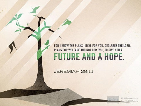 "Jeremiah 29:11 ""For I know the plans I have for you,"""