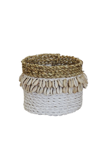 Cowrie Shell Basket White - L