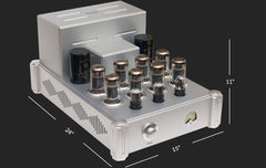 Raven Audio Shaman MK2 Monoblock Amplifier