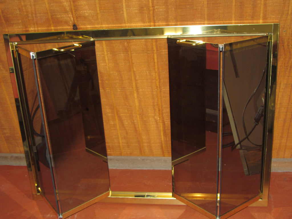 Thermo-Rite Polished Brass Bi-Fold Mirror Glass Fireplace Door 4231 : rite door - pezcame.com
