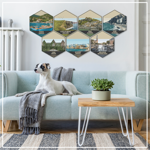Houston Texas Illustration Hexagon Wall Decor