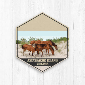 Assateague Island Virginia Hexagon Illustration by Printed Marketplace
