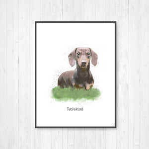 Dachshund Watercolor Illustration