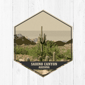 Sabino Canyon Arizona Hexagon Illustration Canvas