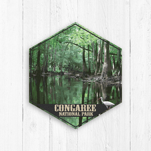 Congaree National Park South Carolina Hexagon Illustration