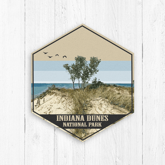 Indiana Dunes National Park Hexagon Canvas