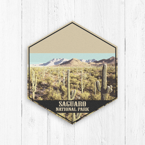 Saguaro National Park Hexagon Illustration Art