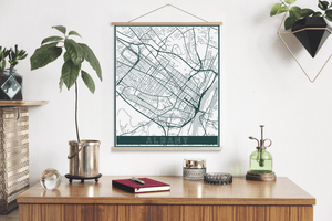 Albany New York Street Map Print