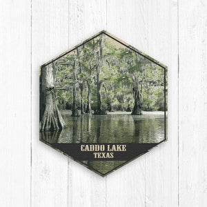 Caddo Lake Texas Hexagon Illustration by Printed Marketplace