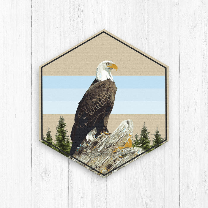 Bald Eagle Animal Hexagon Illustration