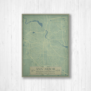 Ann Arbor City Street Map Print