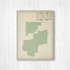 Petrified Forest National Park Street Map Print