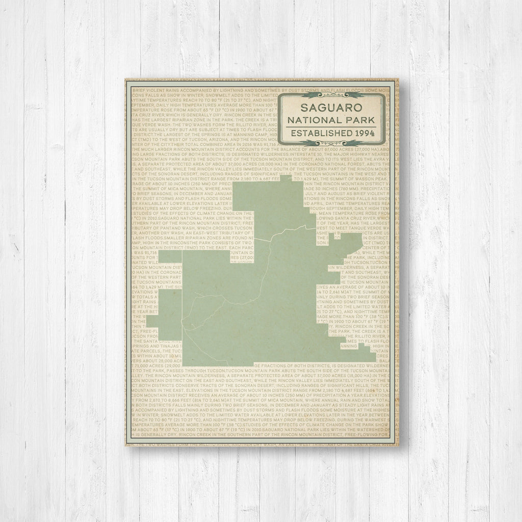 Saguaro National Park Street Map Print