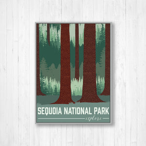 Sequoia National Park Modern Illustration Print