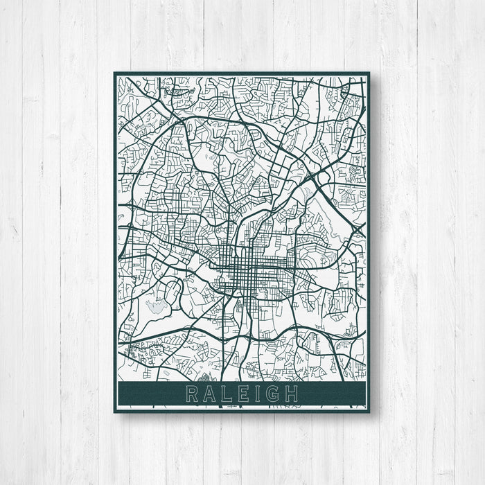 Raleigh North Carolina Street Map Print