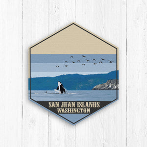 San Juan Islands Washington Hexagon Canvas