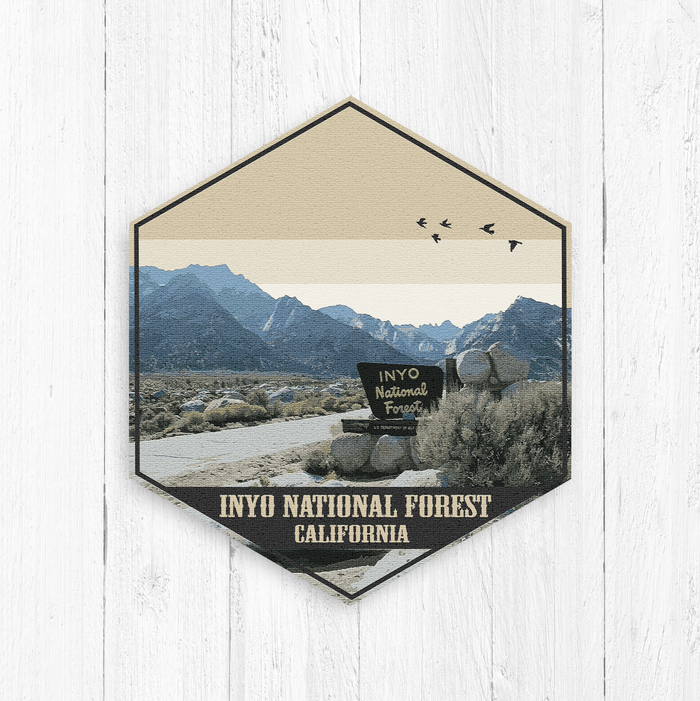Inyo National Forest California Hexagon Canvas Illustration