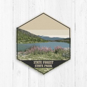 State Forest Colorado Hexagon Illustration Print