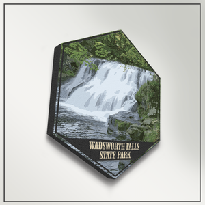 Wadsworth Falls State Park Connecticut Hexagon Illustration