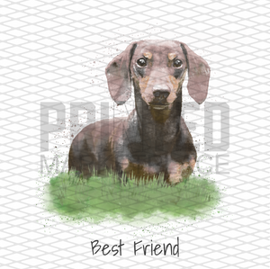 WaterColor Dachshund