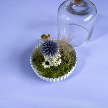 Load image into Gallery viewer, #6 Mini Bell Jar