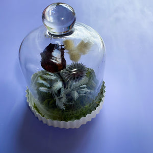 Saturday 15th August 2020 Mini Bell Jar Workshop