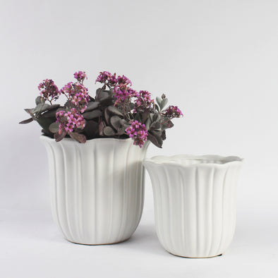 Petal Inspired Ceramic Container