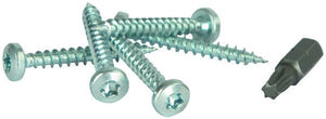 Screws -Galvanised Complete Pk 100 with Driver Bit