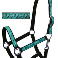 15902 Teal Adjustable Full Size Neoprene Lined Halter with Horse Shoe Overlay