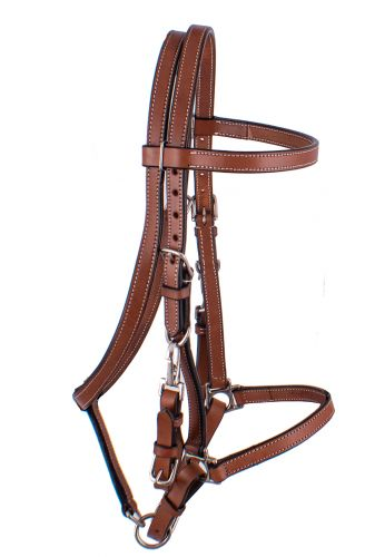 E-118  Argentina Cow Leather Halter Bridle Combo