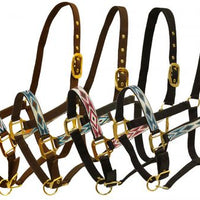 6657  adjustable nylon halter with brass hardware and embroidered diamond design