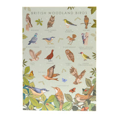 British woodland birds card