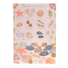 British sea shells card