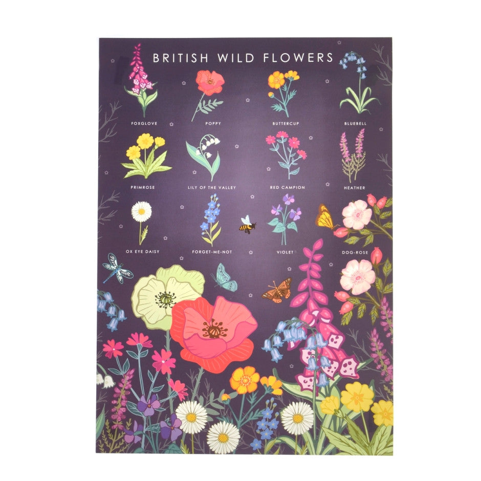 British Wild Flowers Poster - Illustration Print