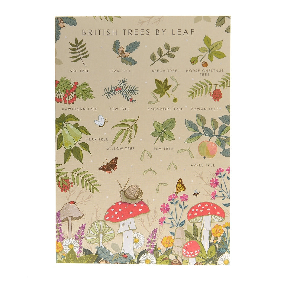 British Trees By Leaf Poster – Illustration Print