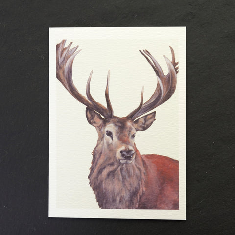 Majestic stag greeting card